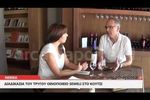 ArcadiaPortal.gr Διαδικασία τρύγου στο οινοποιείο Semeli στο Κουτσι Νεμέας